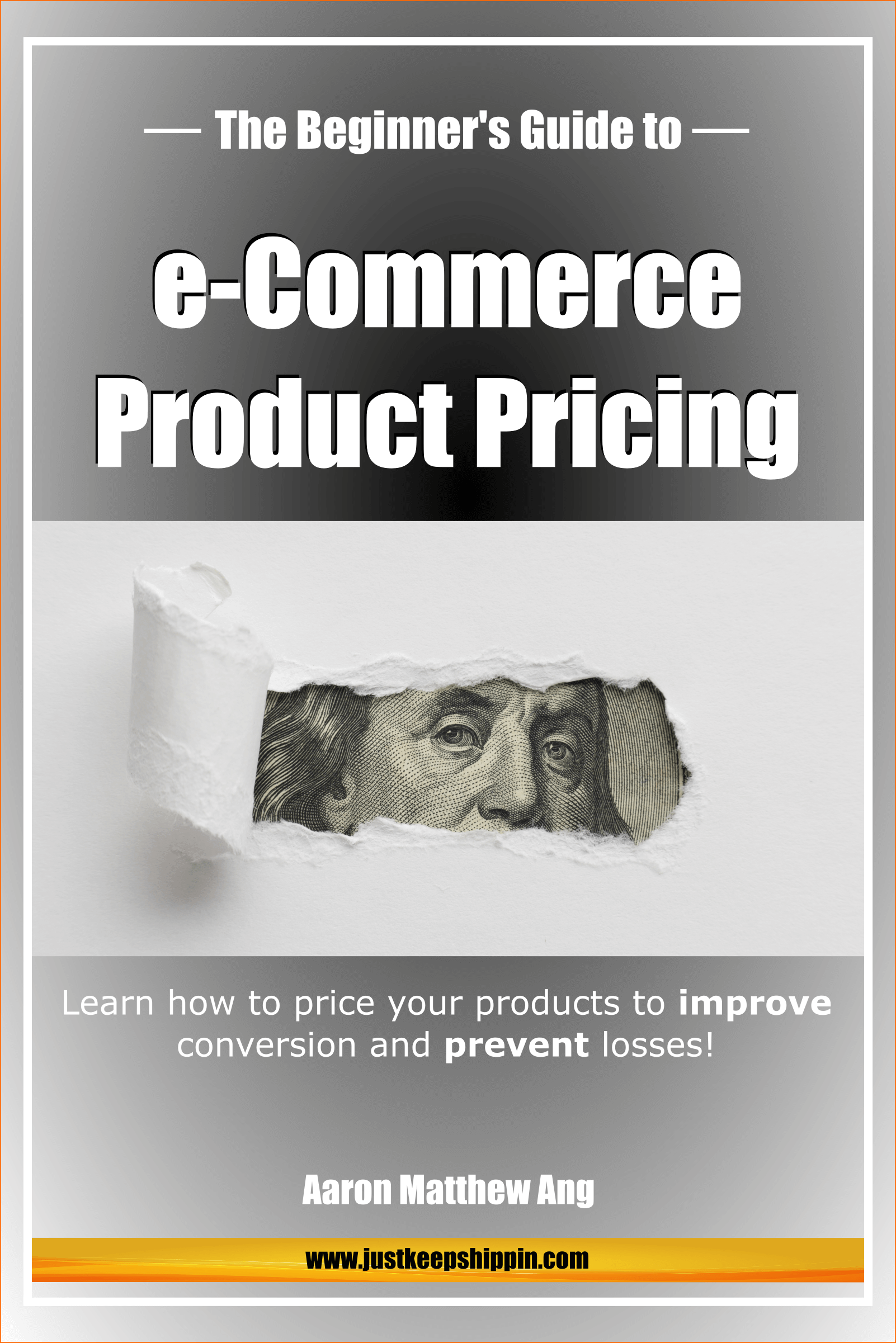 The Beginner's Guide to e Commerce Product Pricing