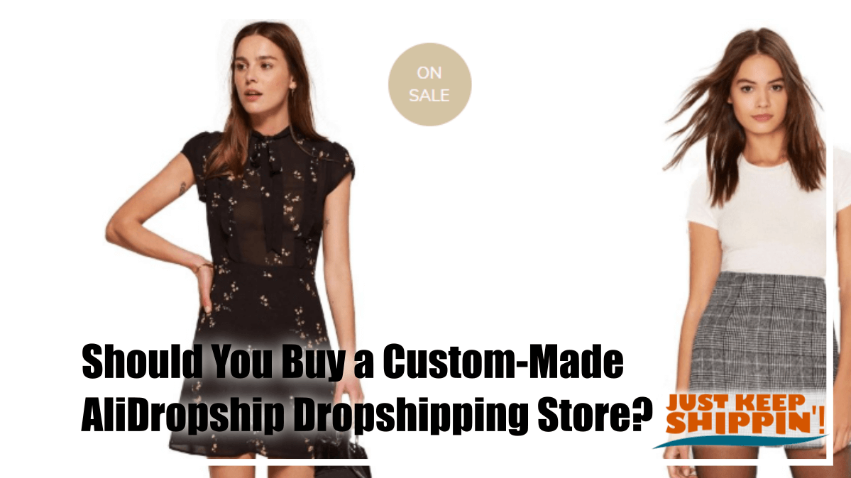Should You Buy a Custom-Made AliDropship Dropshipping Store?
